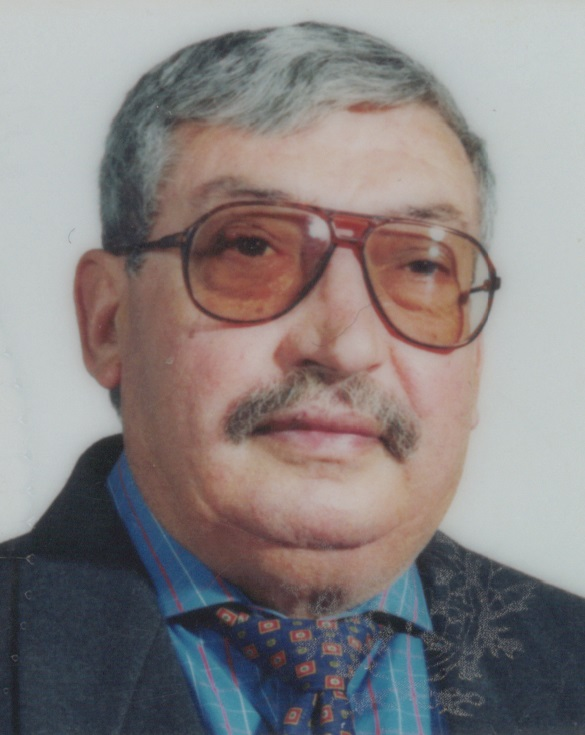 João Luís Fernandes Veloso
