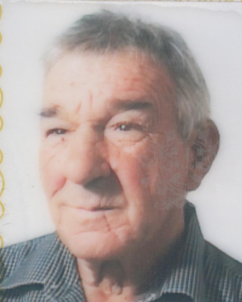 José Pires Guedelha