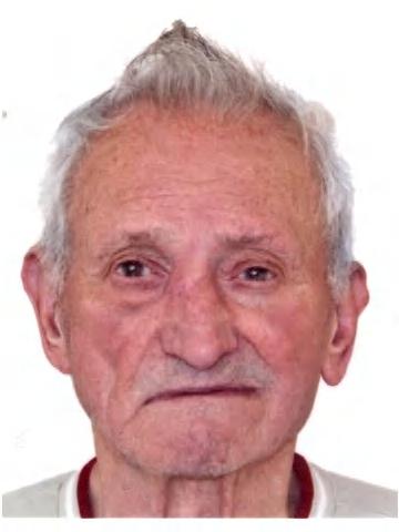 António José Pires