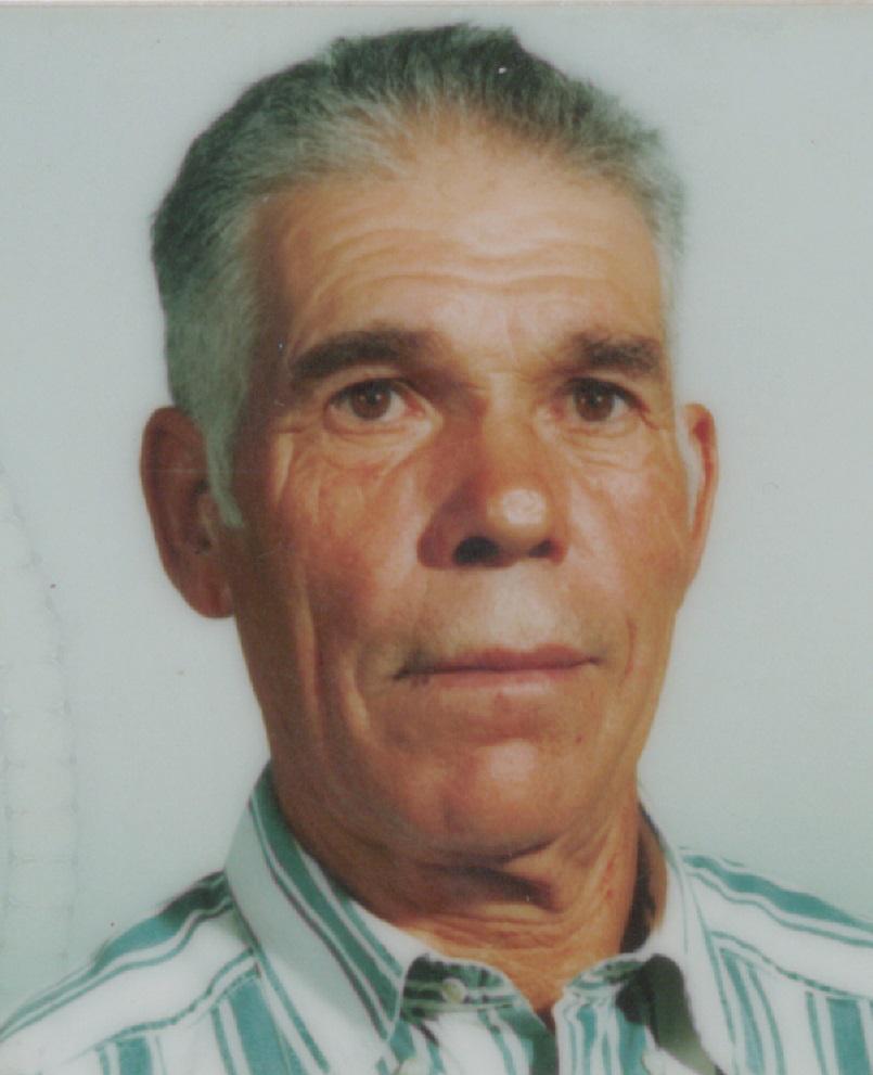 Avelino José Botelho